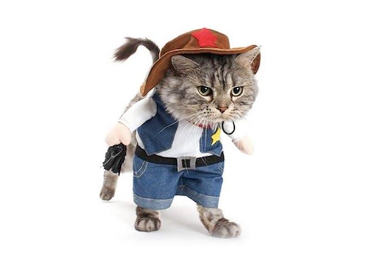 cat halloween costumes sherrif