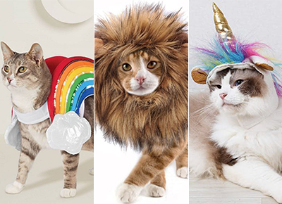 30 Cat Halloween Costumes ,PureWow