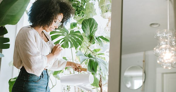 The 10 Best Indoor Hanging Plants to Elevate Your Space