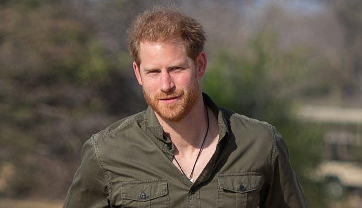 prince harry botswana africa