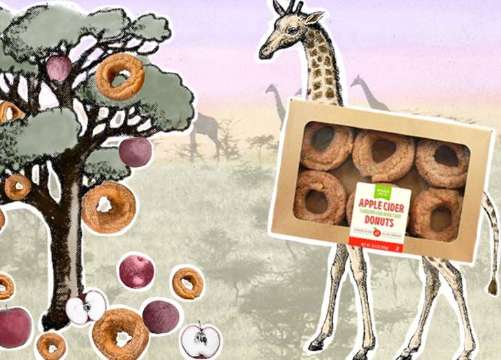 trader joes apple cider donuts