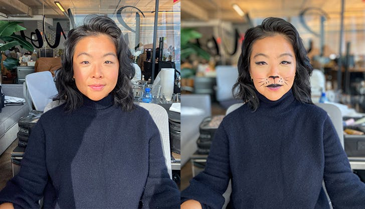 Cat Makeup for Halloween How To Easy