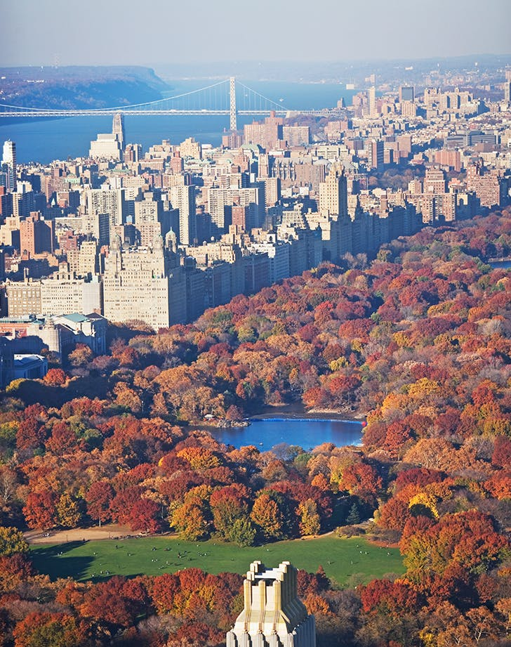best places to travel in november nyc
