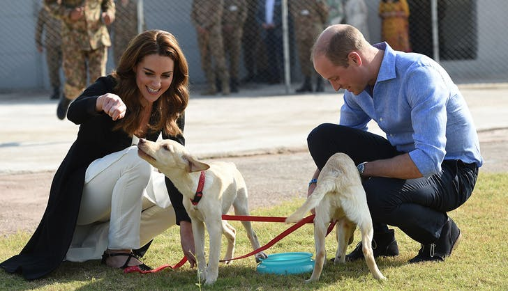 kate middleton prince william playing with puppies