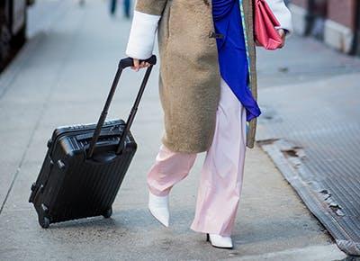 best suitcases cat