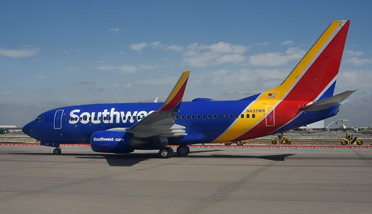 flying with a dog on southwest airlines