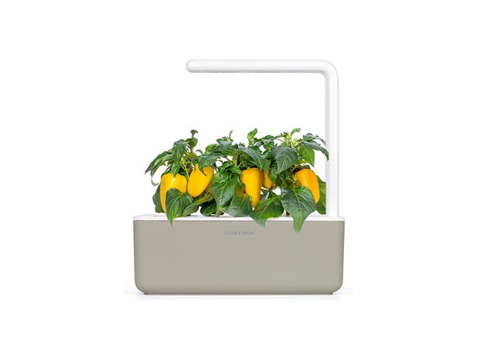 gifts for gardeners   click and grow