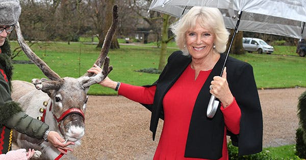 Camilla Parker Bowles's Christmas Party Was so 'Frozen 2'