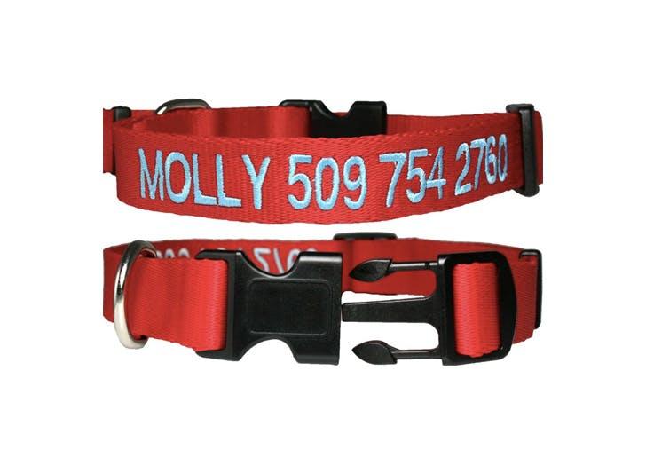 best dog collars gotags