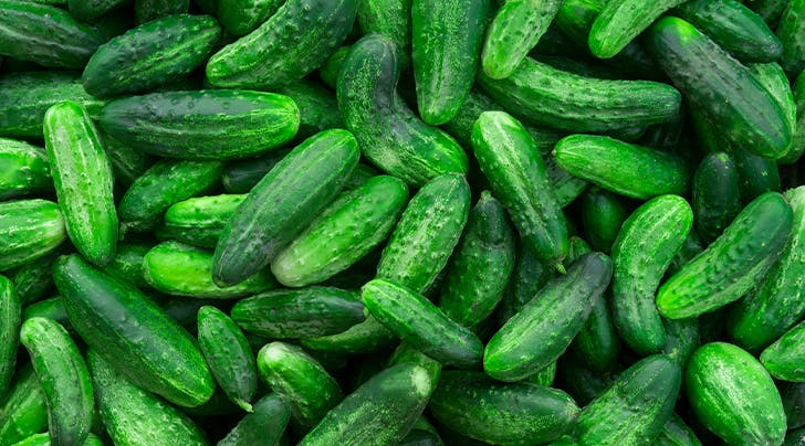 How to Store Cucumbers (Because You Went a Little Nuts at the Farmers Market)