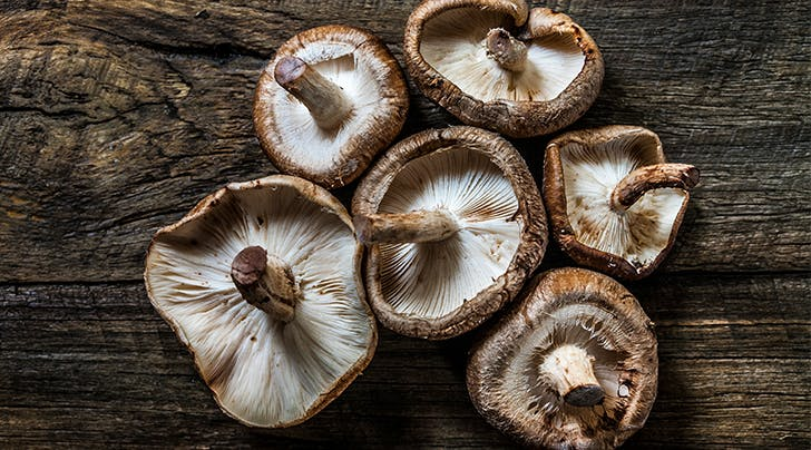 Mushroom Water Is Trending. But Is It Actually Good for You?