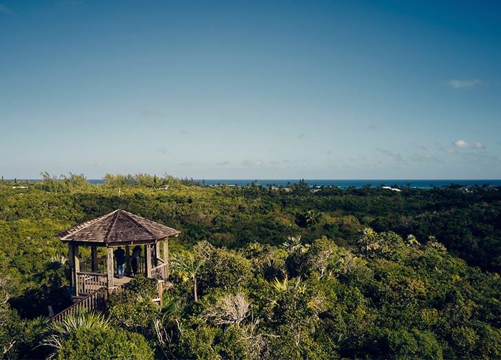 airbnb bahamas sabbatical