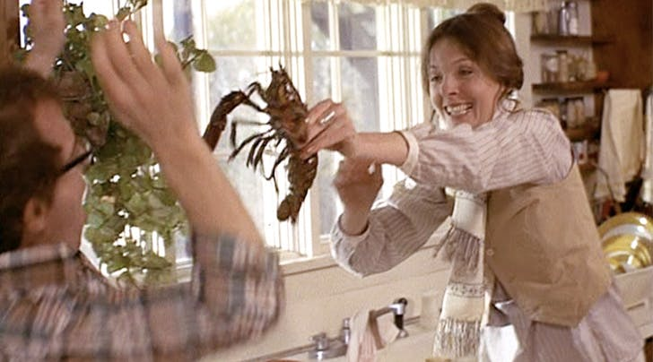 How to Boil Lobster in 6 Easy Steps