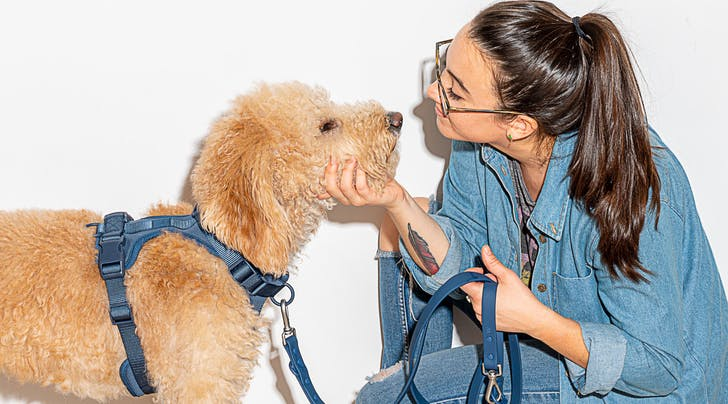 This Dog Walking Kit Is So Chic (and Effective), I'm Actually Bragging About Poop Bags