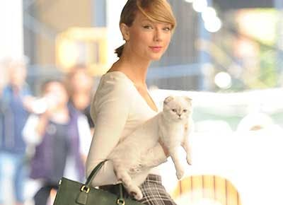 Everything We Know About Taylor Swift S Cats Purewow