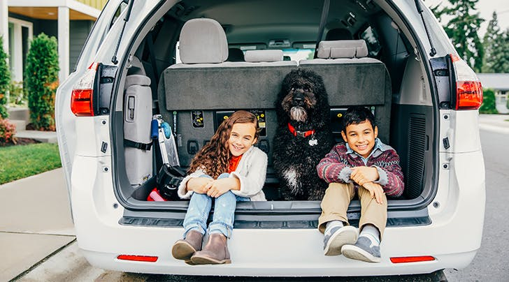 SUVs vs. Minivans: Which Is the Right Option For Your ...