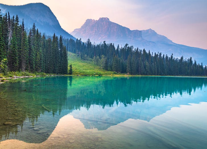 13 Calming Pictures to Help You Feel Better - PureWow