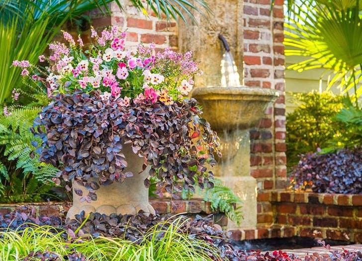 home garden trends 400