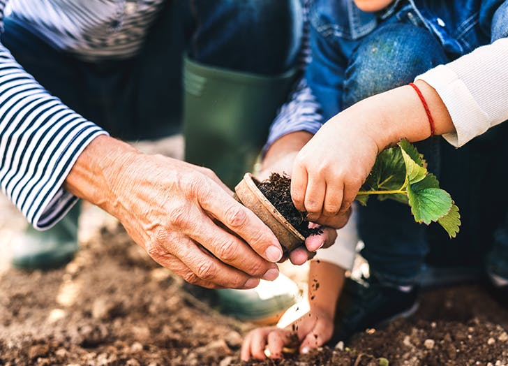 kids interested in cooking garden