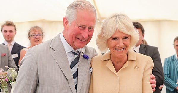 Camilla, Duchess of Cornwall, Just Gave Followers a Rare Look at Her Personal Home Office ( All of Its Dog Portraits)