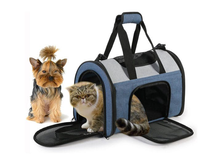 how to foster a dog or cat carrier