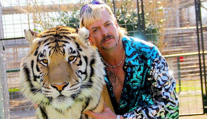 tiger king and i netflix