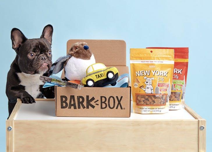 best pet subscription boxes of 2020 cat3