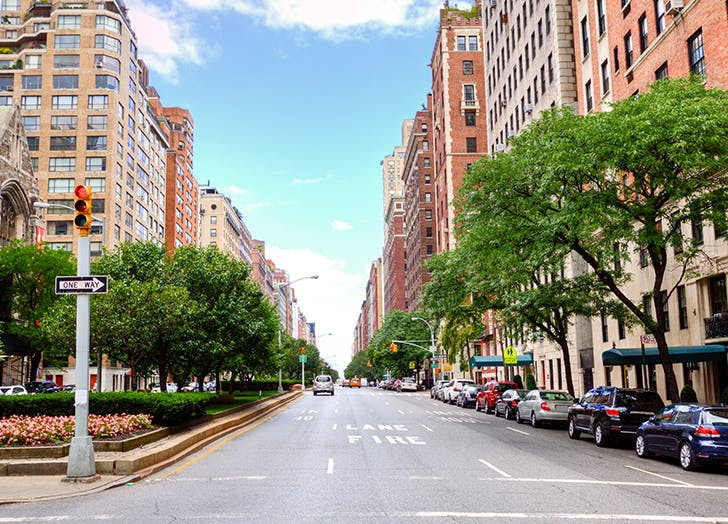 How to Get a Free Tree Planted on Your Block (Because Who Doesn't Want a Greener View?)