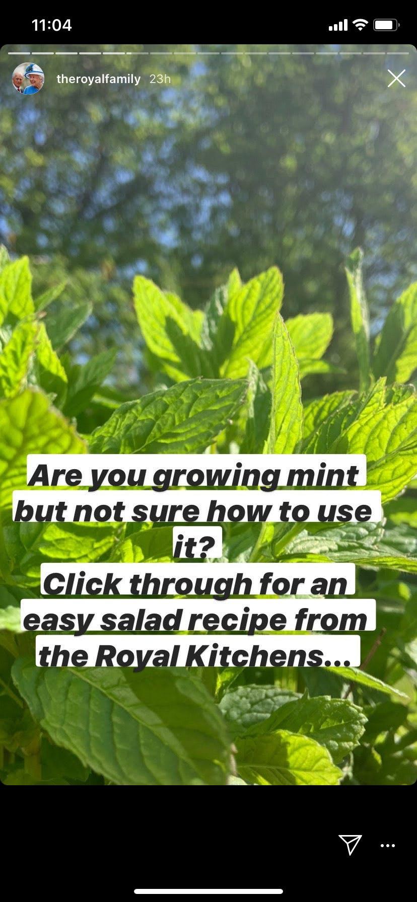 royal recipe 2
