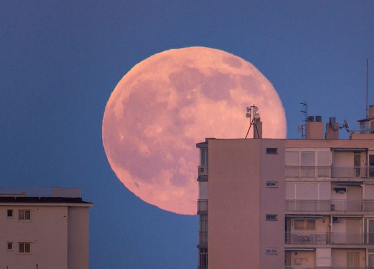 PSA: There's Going to Be a Full Strawberry Moon on June 5