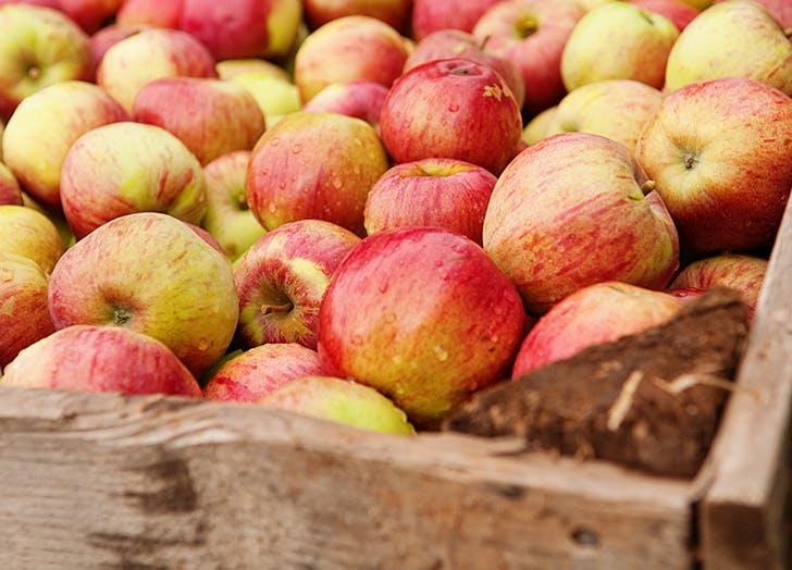 best apples for baking honeycrisp