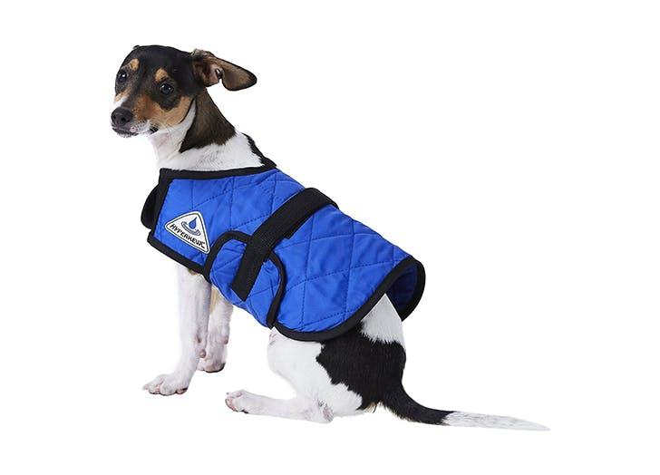 cooling dog vest 1