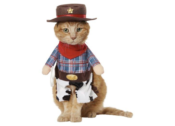cowboy cat halloween costume