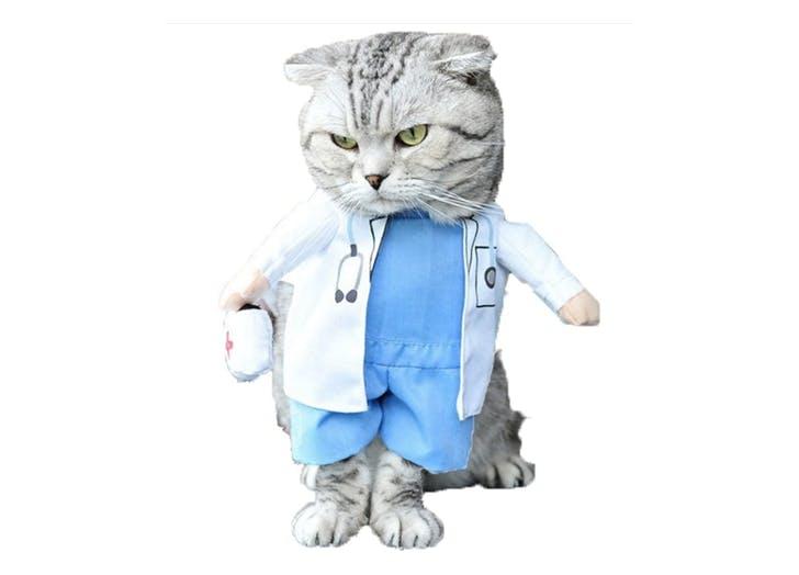 doctor cat costume