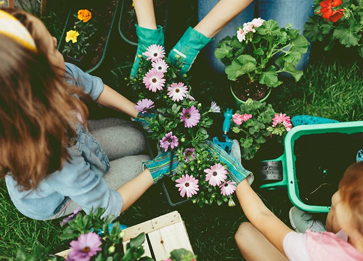 5 Benefits of Gardening (Besides a Yard Full of Gorgeous Flowers)