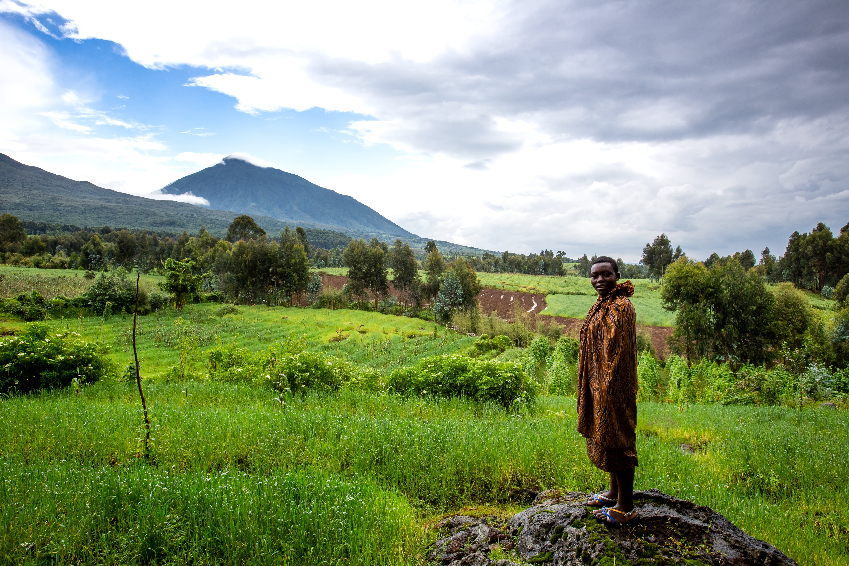 gorilla trekking rwanda high season