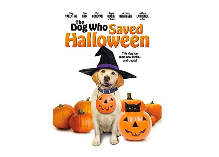 halloween movies for kids the dog who saved halloween