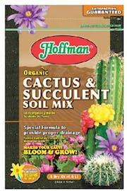 how often water cactus soil