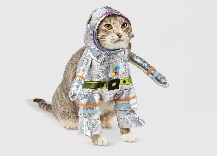 robot astronaut cat costume