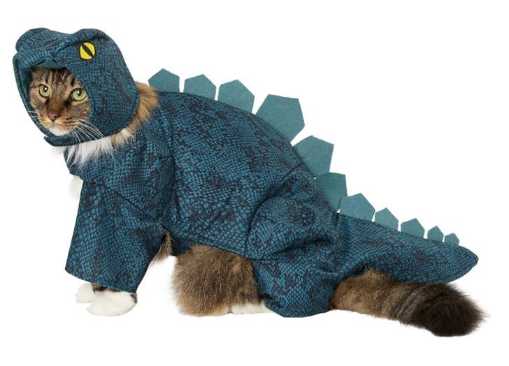 stegasarus dinosaur cat halloween costume