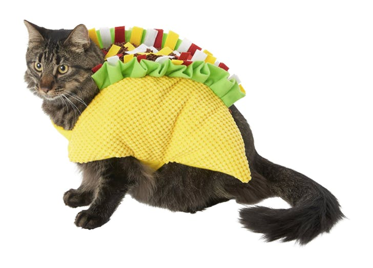 taco cat halloween costume