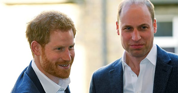 Prince Harry & Prince William Send Message of Brotherly Solidarity on Mother Diana's Birthday