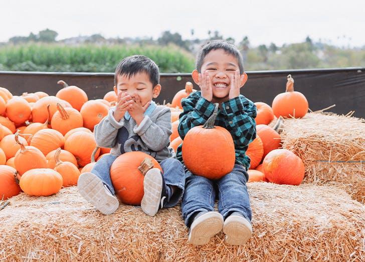 pumpkin picking nj 400