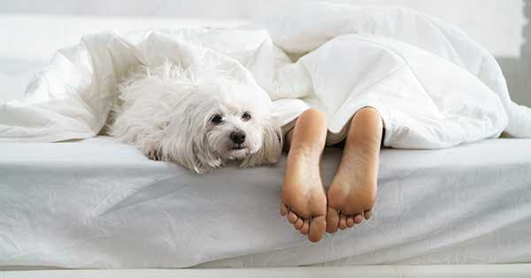 We Asked a Podiatrist: Why Do My Feet Hurt When I Wake Up?