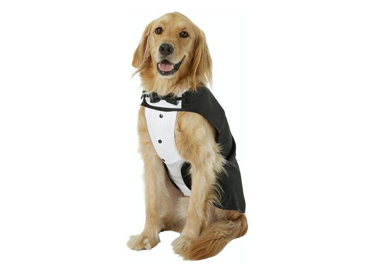 tuxedo dog halloween costume