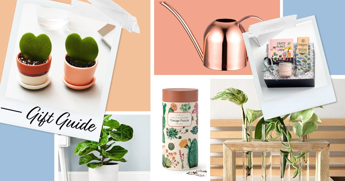 35 Gifts for Plant Lovers (and No, They're Not *All* Plants)