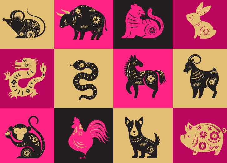 Chinese Zodiac Elements: How to Know What Yours Is and What It Means