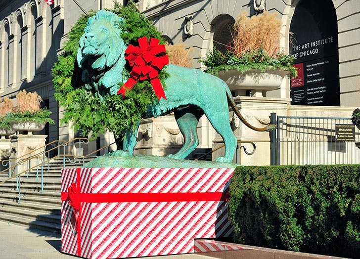 christmas in chicago cat