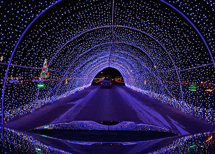 drive thru christmas lights miami cat