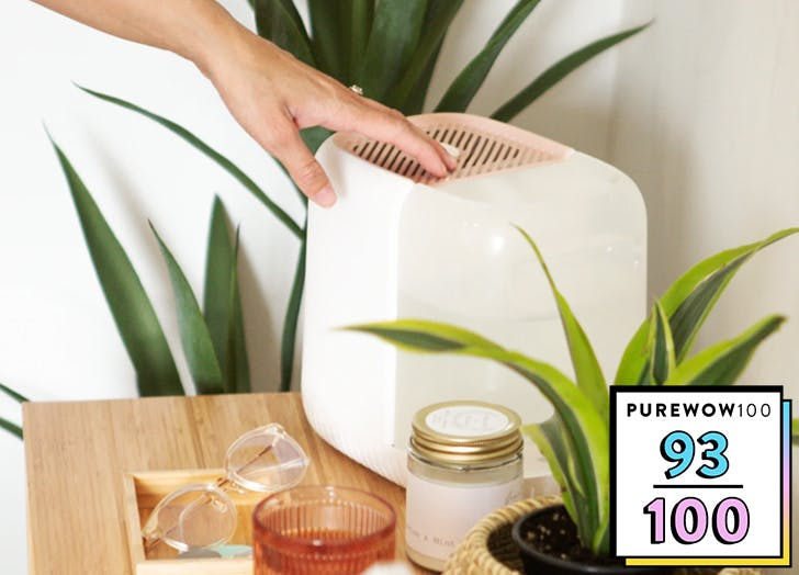 pw100 canopy humidifier category